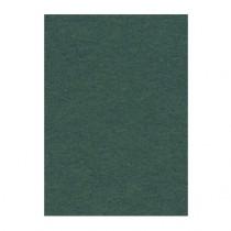 Фон бумажный 2,72x11м Creativity 12 Spruce Green
